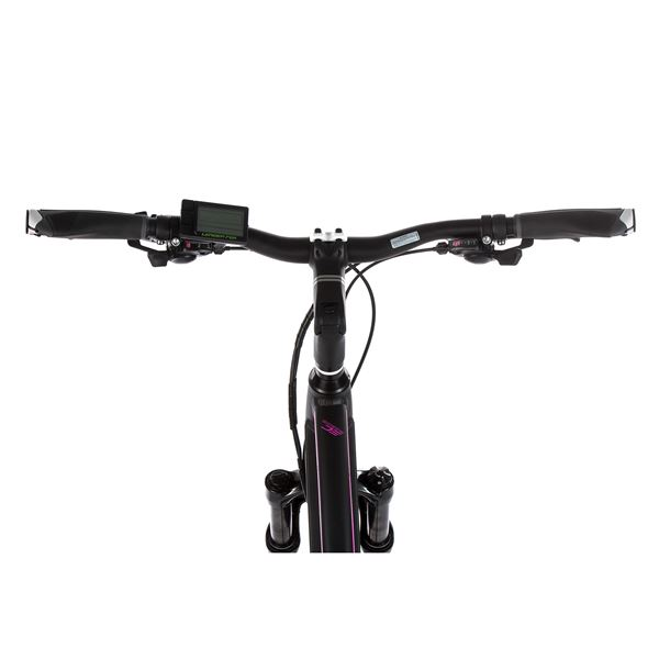 Cross E-bike Leader Fox VENOSA lady, 2019-1